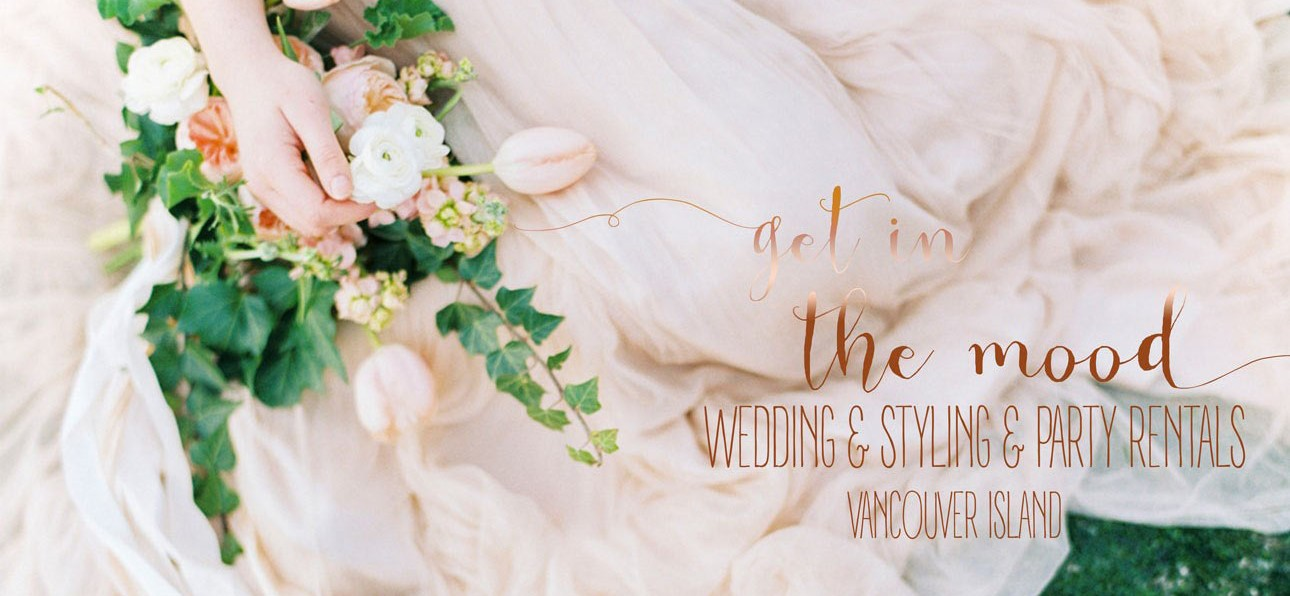 header image of bride to represent wedding planning company